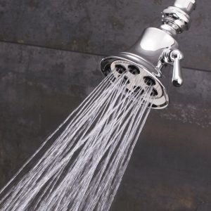 speakman retro anystream 6 jet showerhead