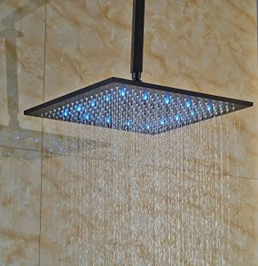 Rozin LED Light 16 Inch Ceiling Mount Rainfall Shower R110825