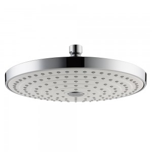 hansgrohe raindance s 240 chrome showerhead 26469401