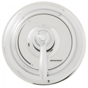 speakman thermostatic pressure balance showerhead cpt 5000