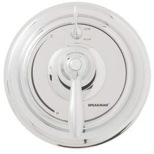 speakman thermostatic pressure diverter showerhead cpt 5400