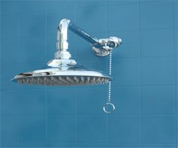 zoe manufacturing pool patio drench shower 150088
