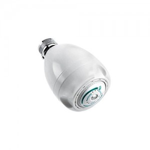 niagara conservation white earth showerhead n2920