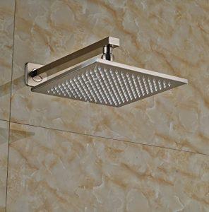 Rozinsanitary 10 Inch LED Light Brushed Nickel Rain Shower
