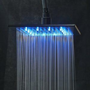 Rozinsanitary 10 Inch LED Light Wall Mounted Showerhead