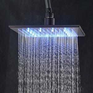 Rozinsanitary 12 Inch LED Celing Mount Showerhead