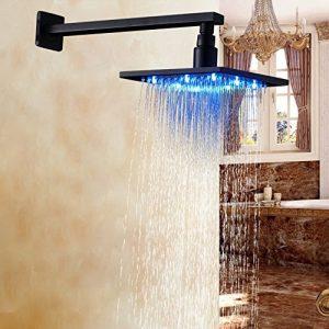 Rozinsanitary 8 Inch Wall Mount LED Light Rainfall Showerhead
